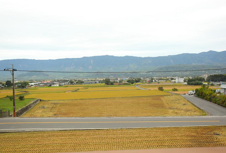 台東景點 關山自行車道05