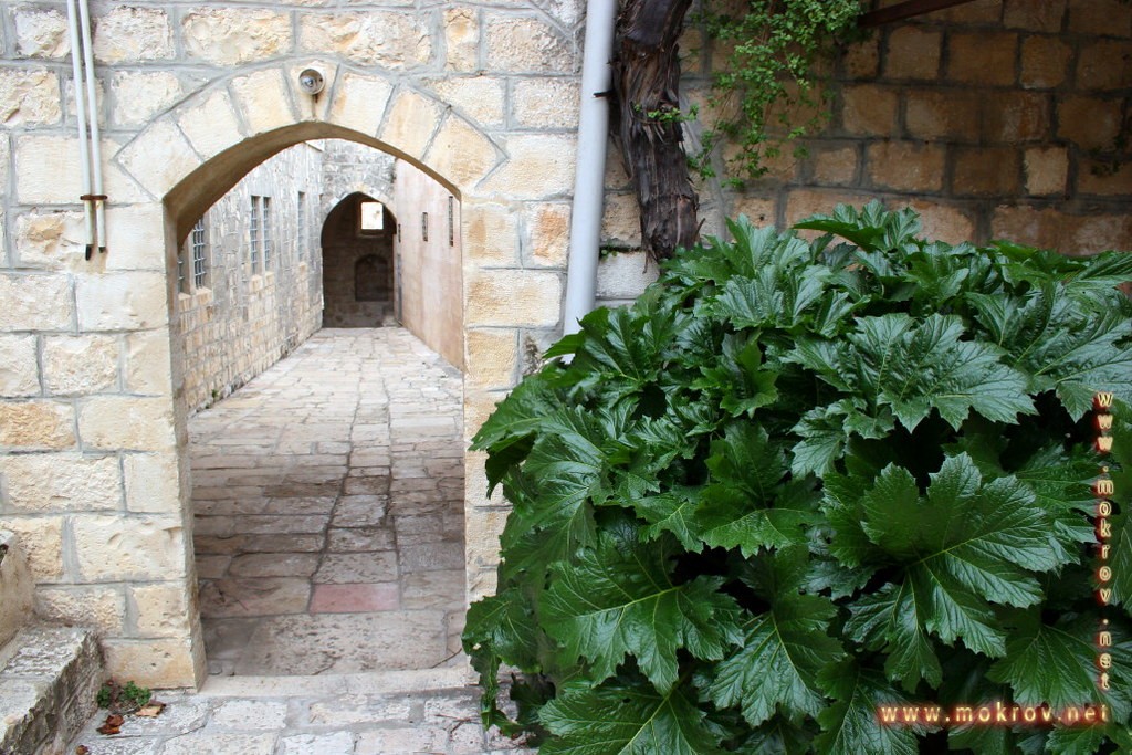 Город Иерусалим с фотоаппаратом прогулки туристов