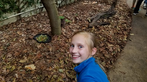 Nov 1 2017 Virginia Beach Field trip 5th Grade (3)