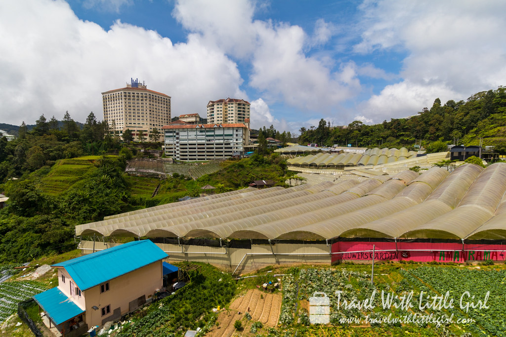 A beautiful view of the Cameron Highlands from a shopping mall