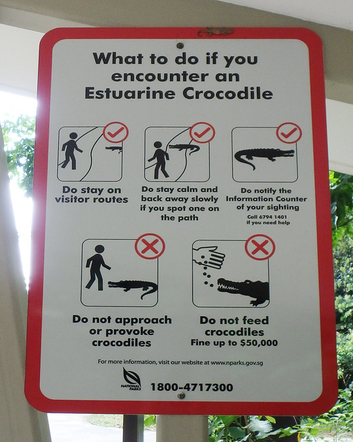 Sungei Buloh Wetland Reserve: Sign on what to do if you encounter a crocodile