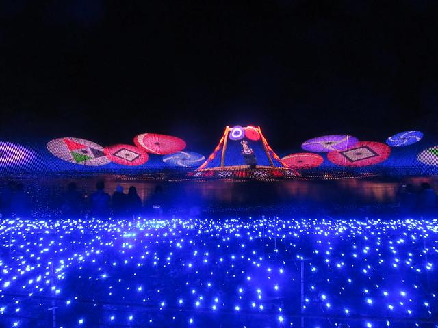 Nabana Christmas Lights 17