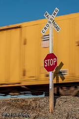 Union Pacific | Boxcar | UP Memphis Subdivision