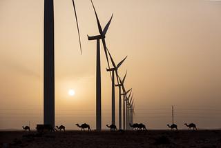 Tarfaya â das gröÃte Windkraftwerk Afrikas / Tarfaya -Africa's largest wind power plant