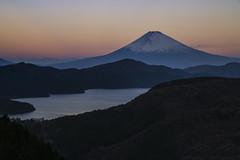 大観山展望台 II