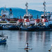 2017 - Mexico - Manzanillo - Boluda Towage and Salvage por Ted's photos - Returns late Feb