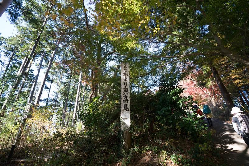 20171119_高尾山_0158.jpg