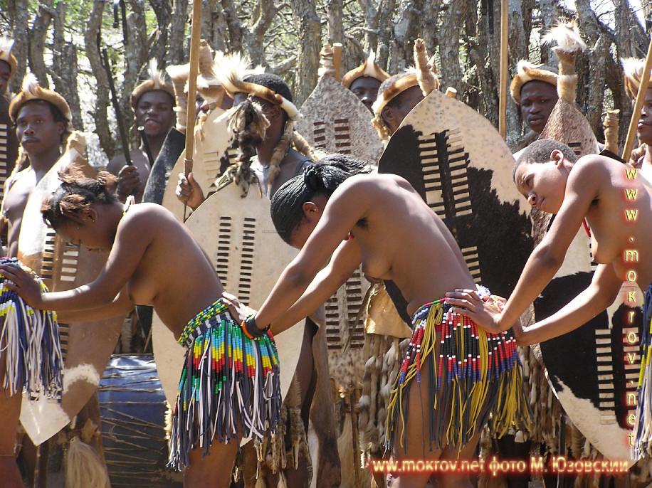 Национальный Парк Крюгера ЮАР  (7)