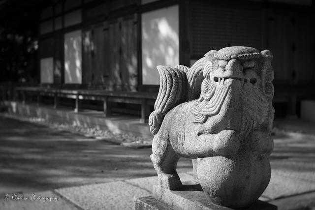 倉敷美観地区 / Kurashiki Bikan historical quarter