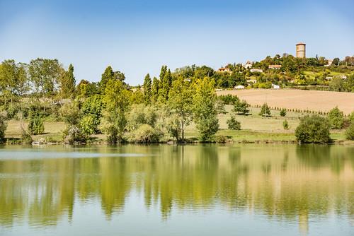 02-Lac de Magre, aigrettes blanches et Monclar d'Agenais
