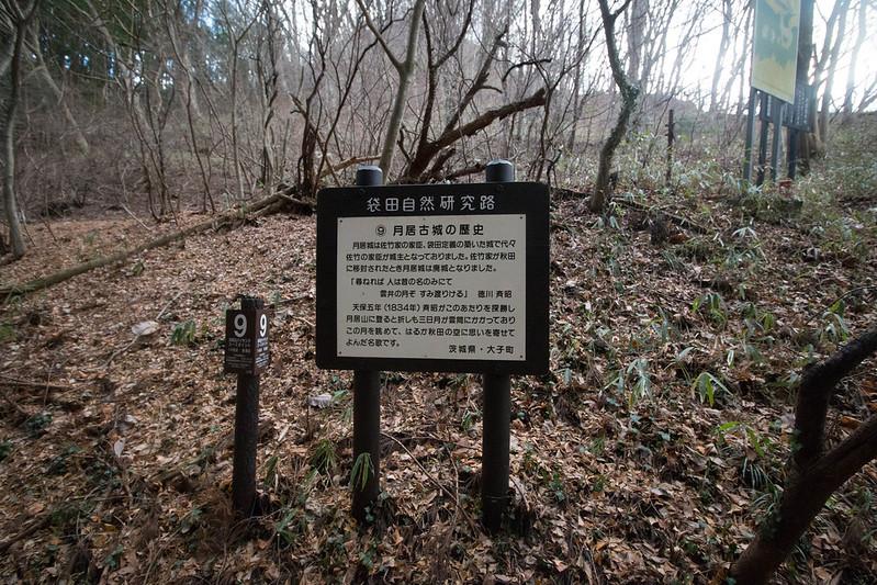 20161231-奥久慈男体山-0454.jpg
