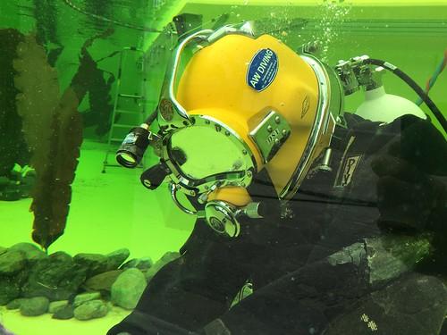 Reparatie en onderhoud aan uw aquarium of bassin