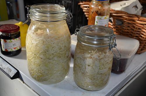 saurkraut Nov 17