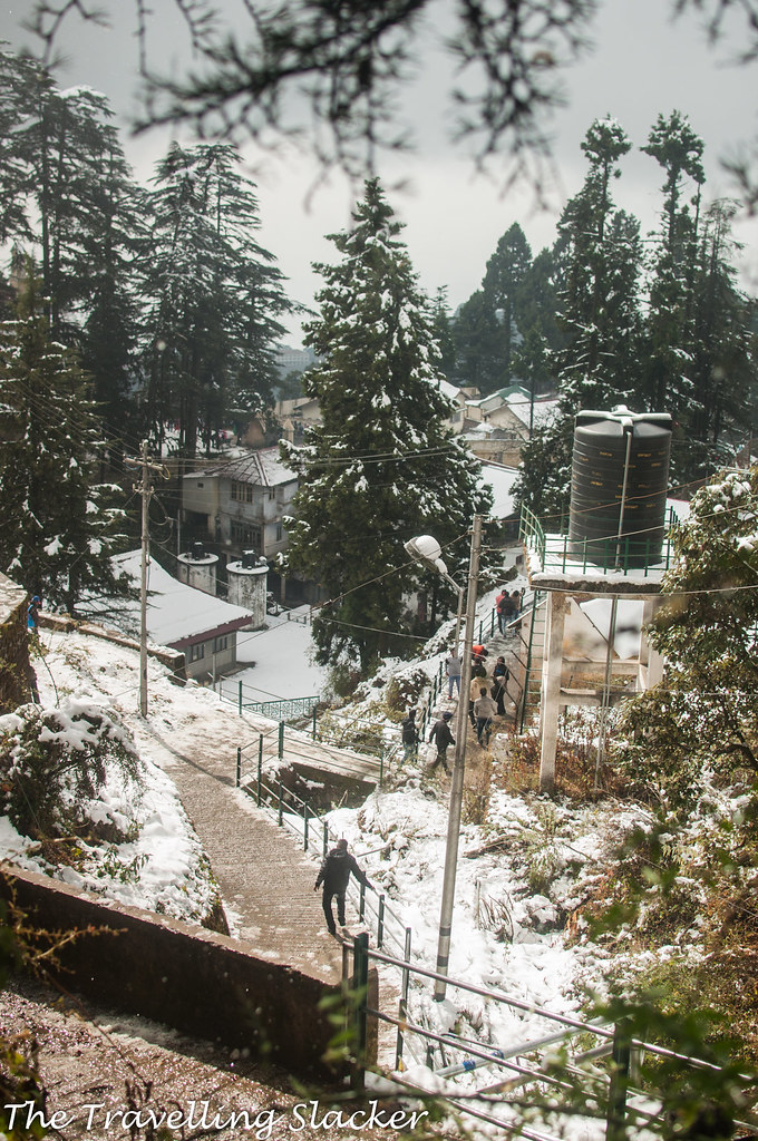 Mussoorie Winter (25)