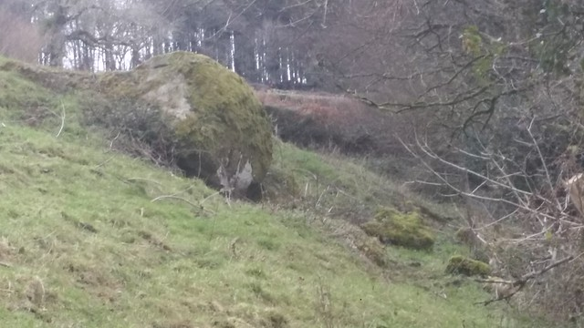 Higher outcrop of Oakmoor Wood Rocks