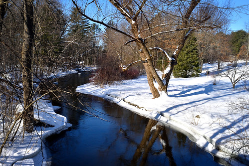 Winter on the Pine River