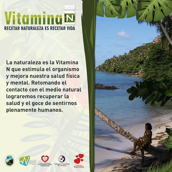 Infografia Vitamina N