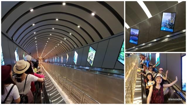 Tianmen Mountain escalators