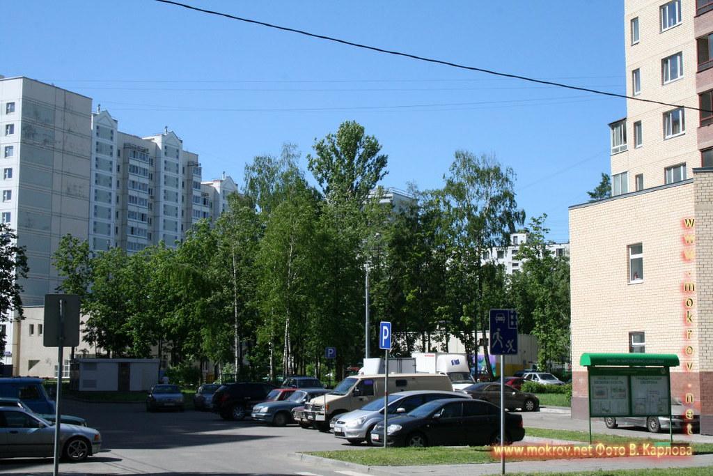 Город Зеленоград фотографии