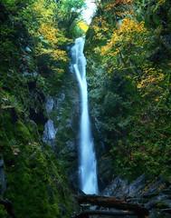 Narrow Falls