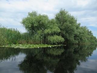 Danube Delta Waterway
