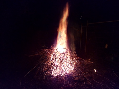 bonfire Nov 17