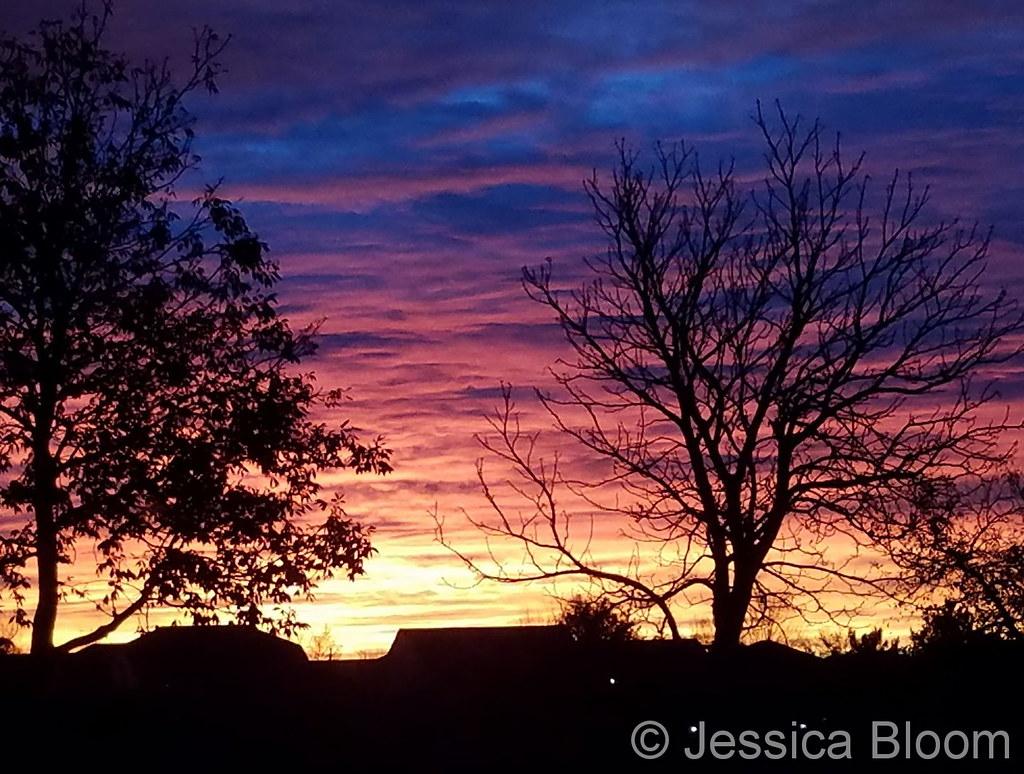 November 3, 2017 - A stunning sunrise in Thornton. (Jessica Bloom)