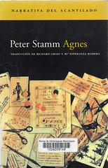Peter Stamm, Agnes