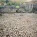 Floor of Lesnes Abbey