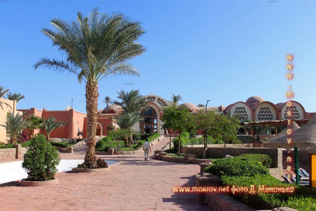 Шарм-эш-Шейх — город-курорт в Египте прогулки туристов с фотокамерой