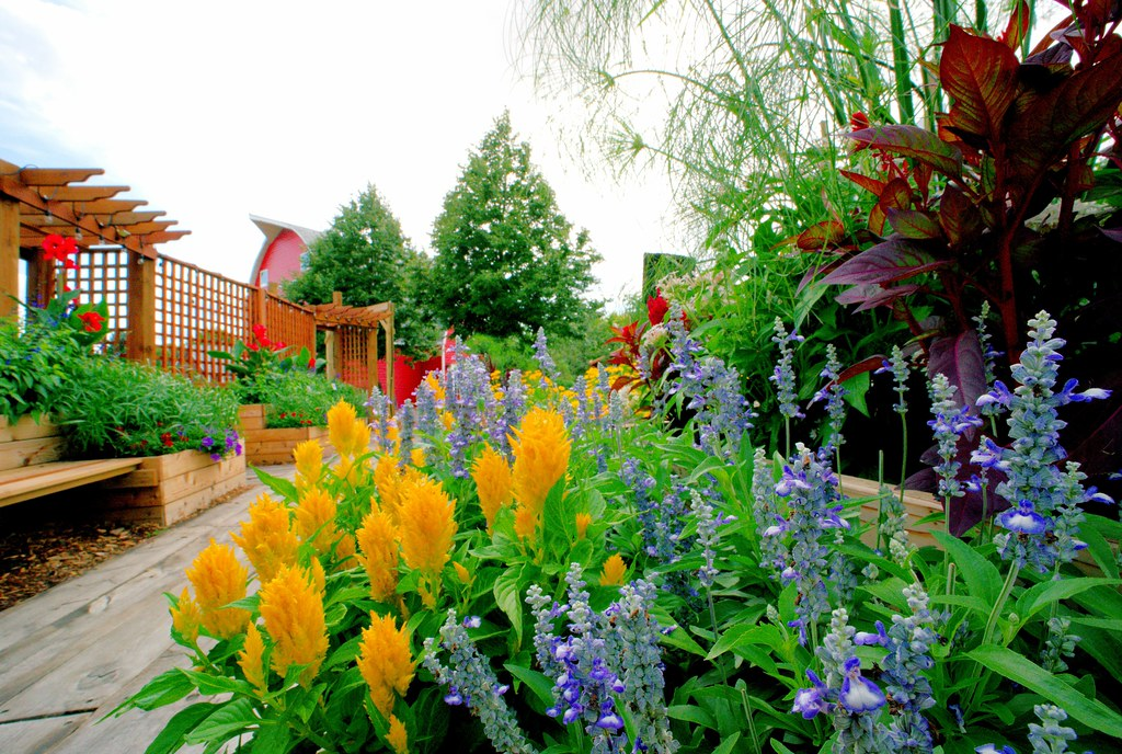 Sensory Garden_23