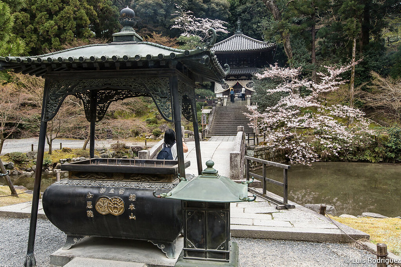 Chion-in-24