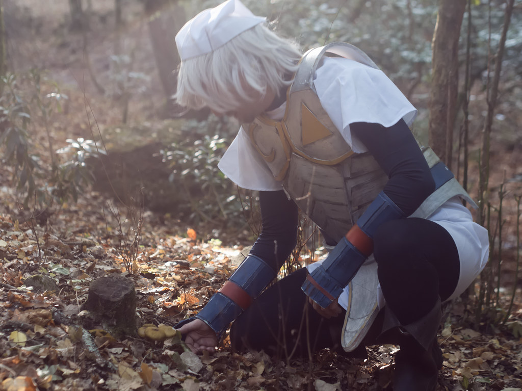 related image - Shooting Zelda & Link -2017-10-21- P1099839