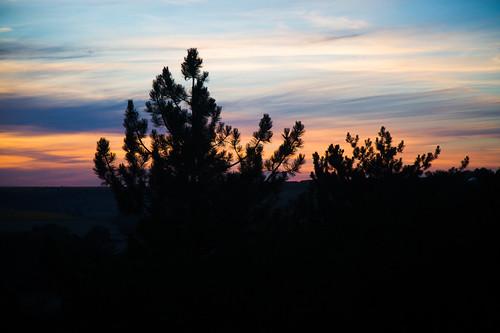 dniester landscape moldova nistru pines summer dusk evening fields island river sunset днестр дністер молдавия вечер лето остров пейзаж поля река сосны сумерки aneniinoi md