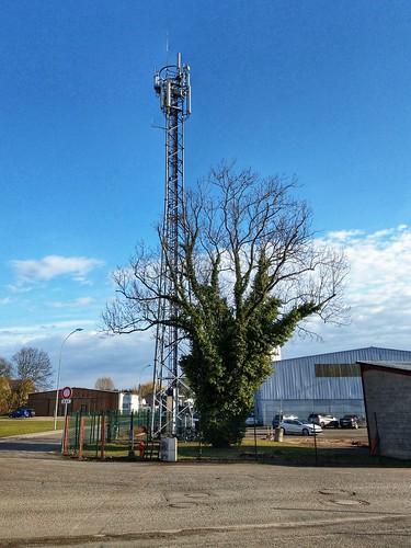 La nature avec une antenne 4G