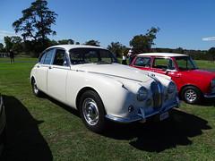 Jaguar Mk2 240