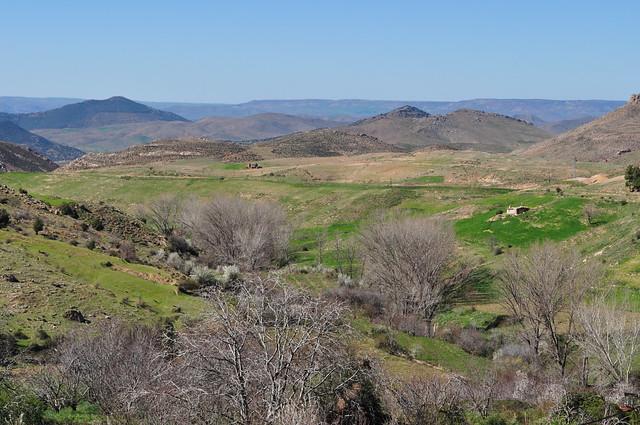 Descendant vers Azrou, Aïn Leuh, province d'Ifrane, région de Fès-Meknès, Maroc.