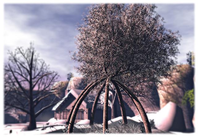 The Winter Brise