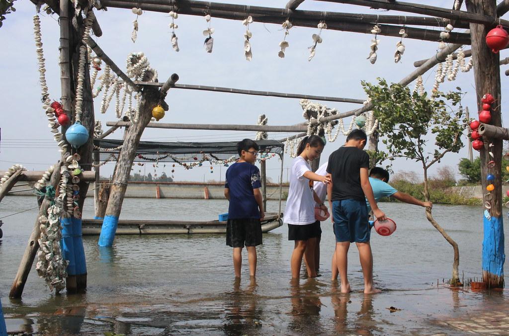 口湖馬蹄蛤 (8)
