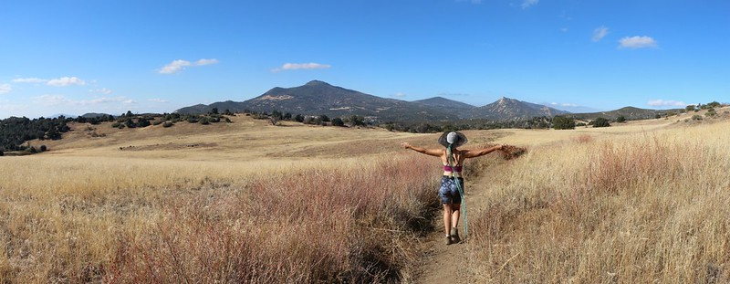 High meadows on the Harvey Moore Trail with Cuyamaca and Stonewall Peaks in the distance