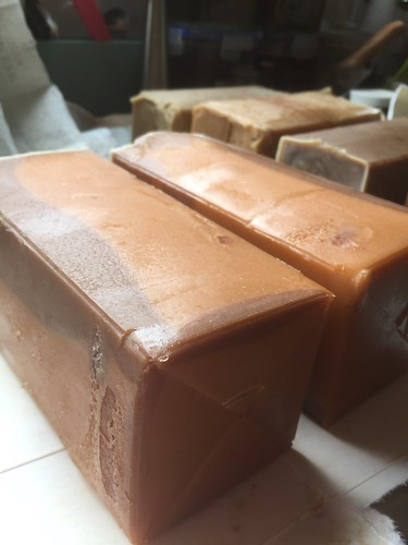 Elecampane Soap Logs