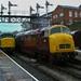 45135+D832 Bury D210bob R00002