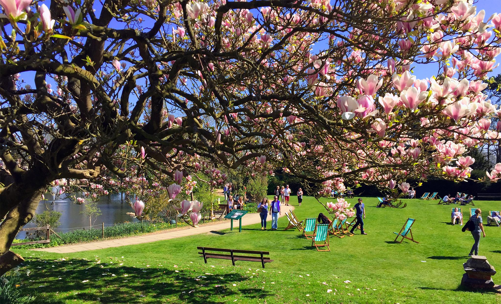 Bletchey Park, Inglaterra bletchley park - 38784607682 d3d46c515d o - Bletchley Park, el secreto mejor guardado de Inglaterra