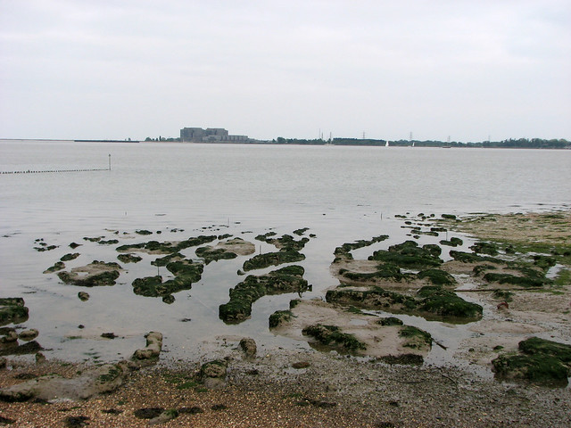 Muddy islands in the Blackwater Estuary