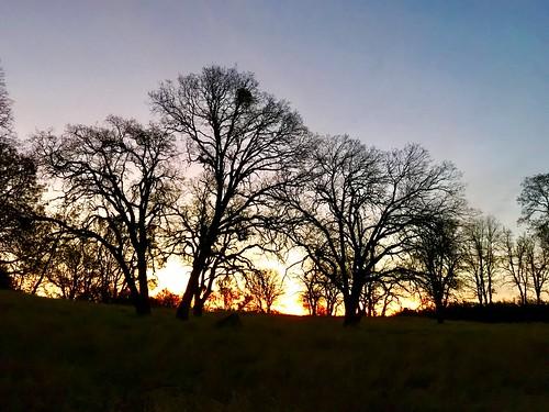 auburnfit auburnca trailrun morningrun clementinetrail lakeclementine 500am sunrise