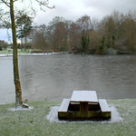 Icy seat and lake at Haslam Park, Preston