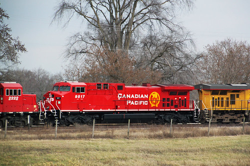 CP 9817 in clean, fresh Beaver second out on 484