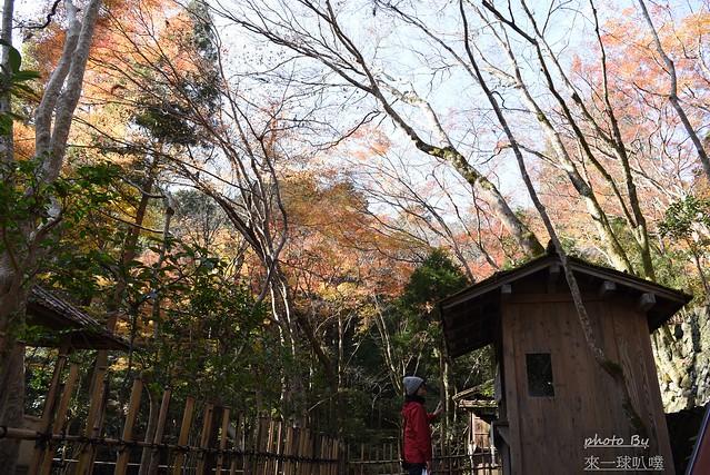 高山寺10