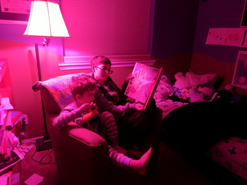 Zillion Lumen Pink Lamp