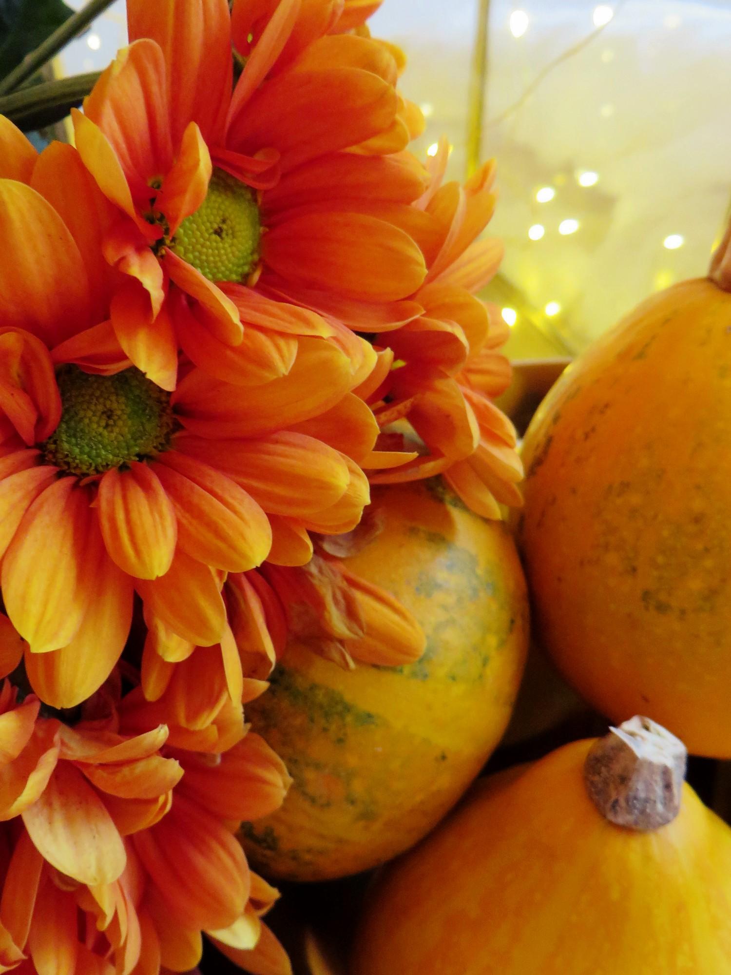 oranssiakotona6